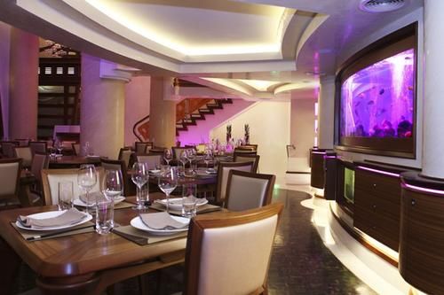 Chi Lounge - Modern Chinese Cuisine