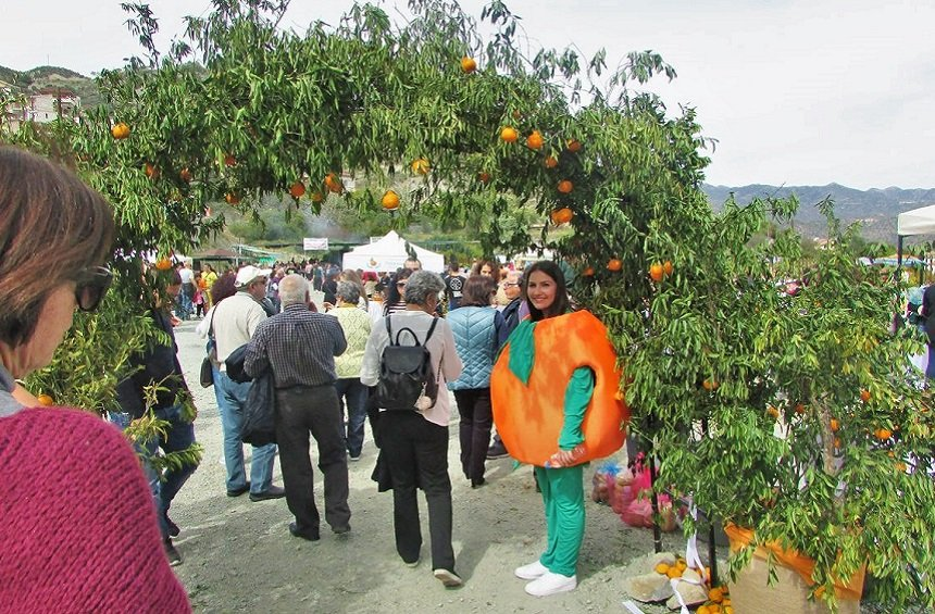 Clementine Festival