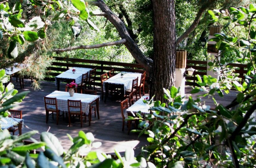 Maramenos tavern: Homemade, traditional cooking 'nestled' in an evergreen paradise!
