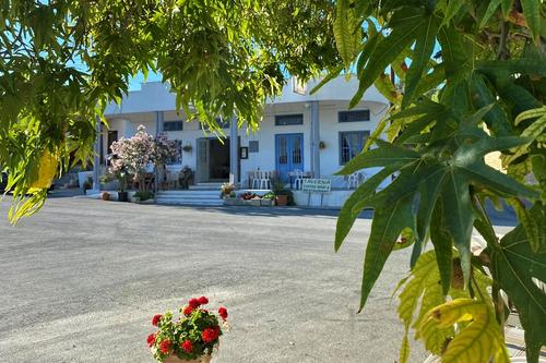 Platanos Tavern: A picturesque tavern in the Limassol mountains serving fresh trawl fish!