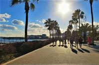 PHOTOS: The winter in Limassol is full of wonderful contrasts!