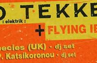 Trio Tekke & Flying Ibex