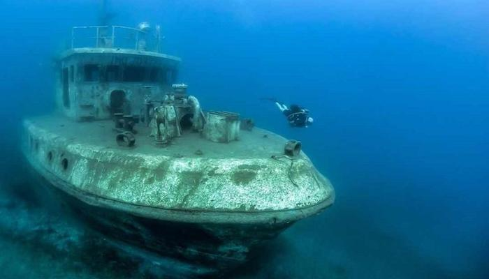 VIDEO at 'Constandis' shipwreck: Huge groupers await for divers to play with them