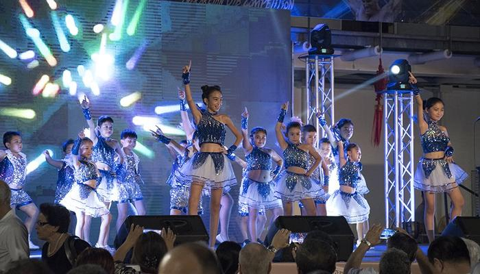 112 images from the first Chinese Cultural Festival in Cyprus!