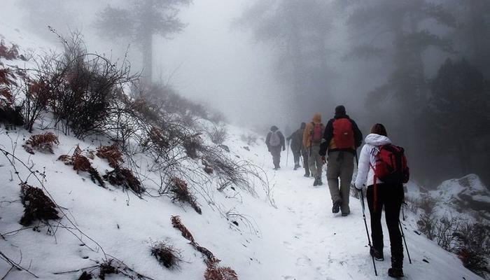 Adventurous hiking in the frozen forest of Troodos!