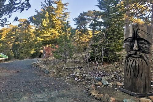 Troodos Square Trail