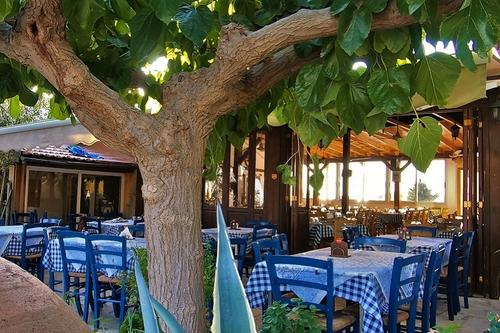 Ariadne Tavern: Homemade, Cypriot cuisine on the road connecting the wine villages of Limassol!