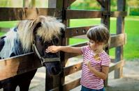 OPENING: Theme pony park in Limassol, ready to welcome all children and parents!