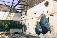PHOTOS: The deserted SODAP factory is a non typical street art gallery!