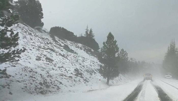 PHOTOS + VIDEO: Sumer turned to winter on Limassol's Mountains!