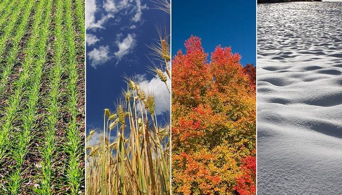 All of the year's seasons in 1 week!