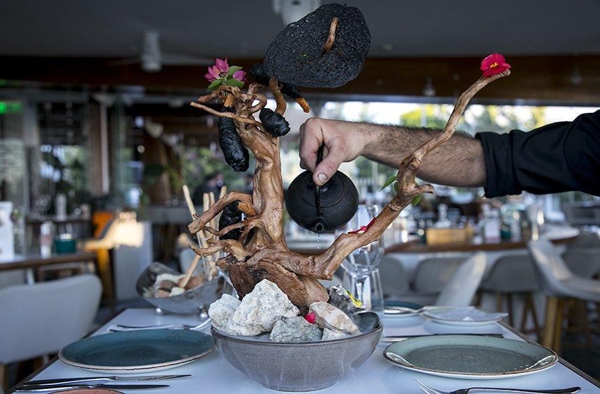 Prawn bonsai: A surprising culinary experience in Limassol!