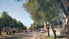 Makarios Avenue in the 1960s.