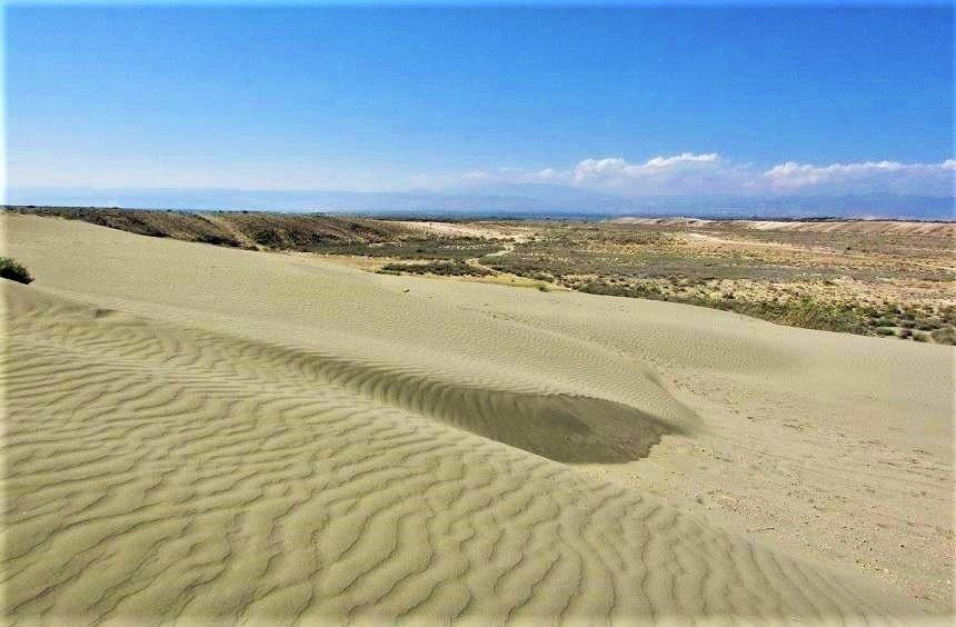 The sand hills of the Limassol 'desert'!
