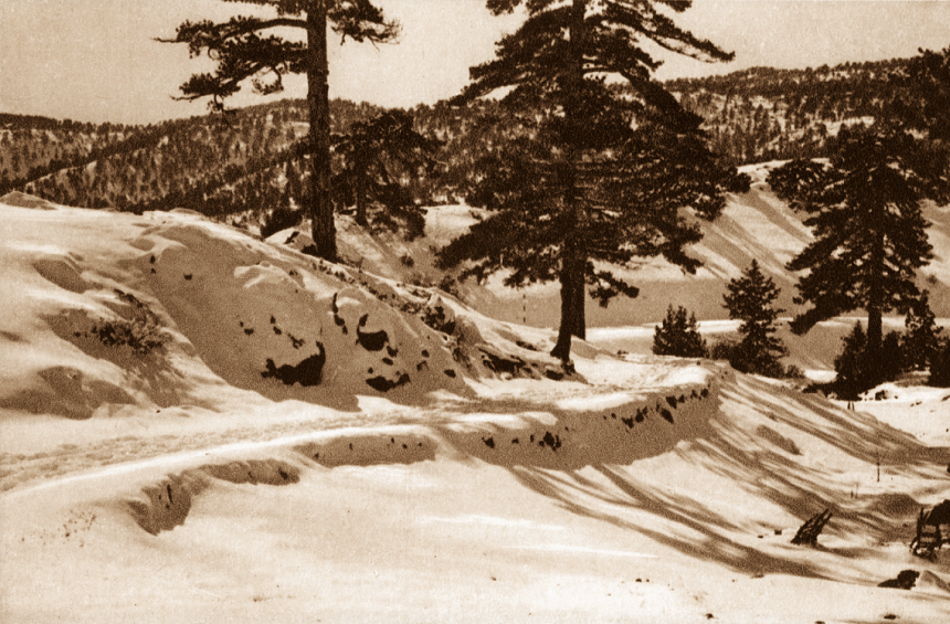 PHOTOS: The snowy slopes of Troodos of decades past!