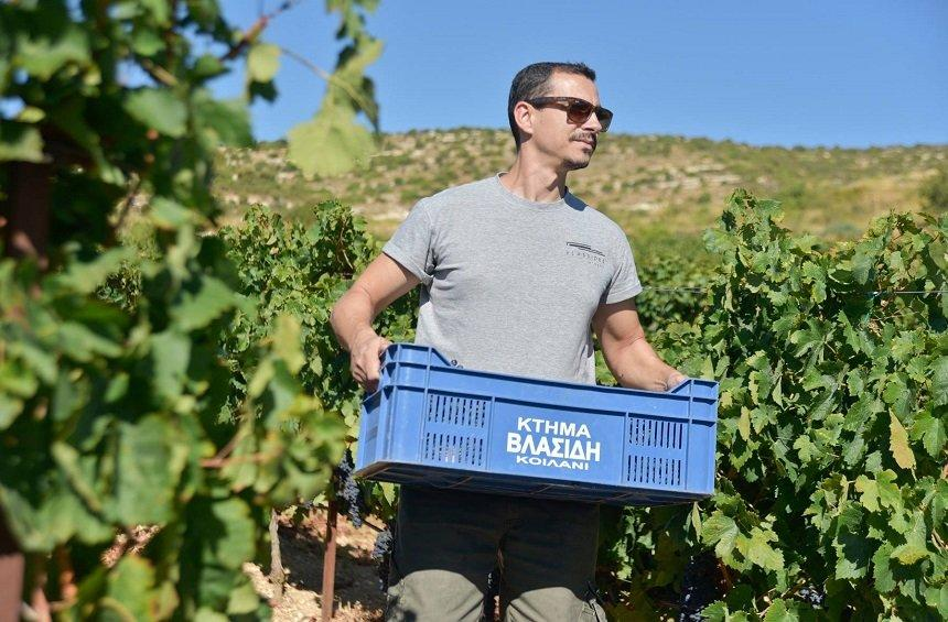 'S. Vlassides: The unconventional winemaker explains why he favored Limassol over California!